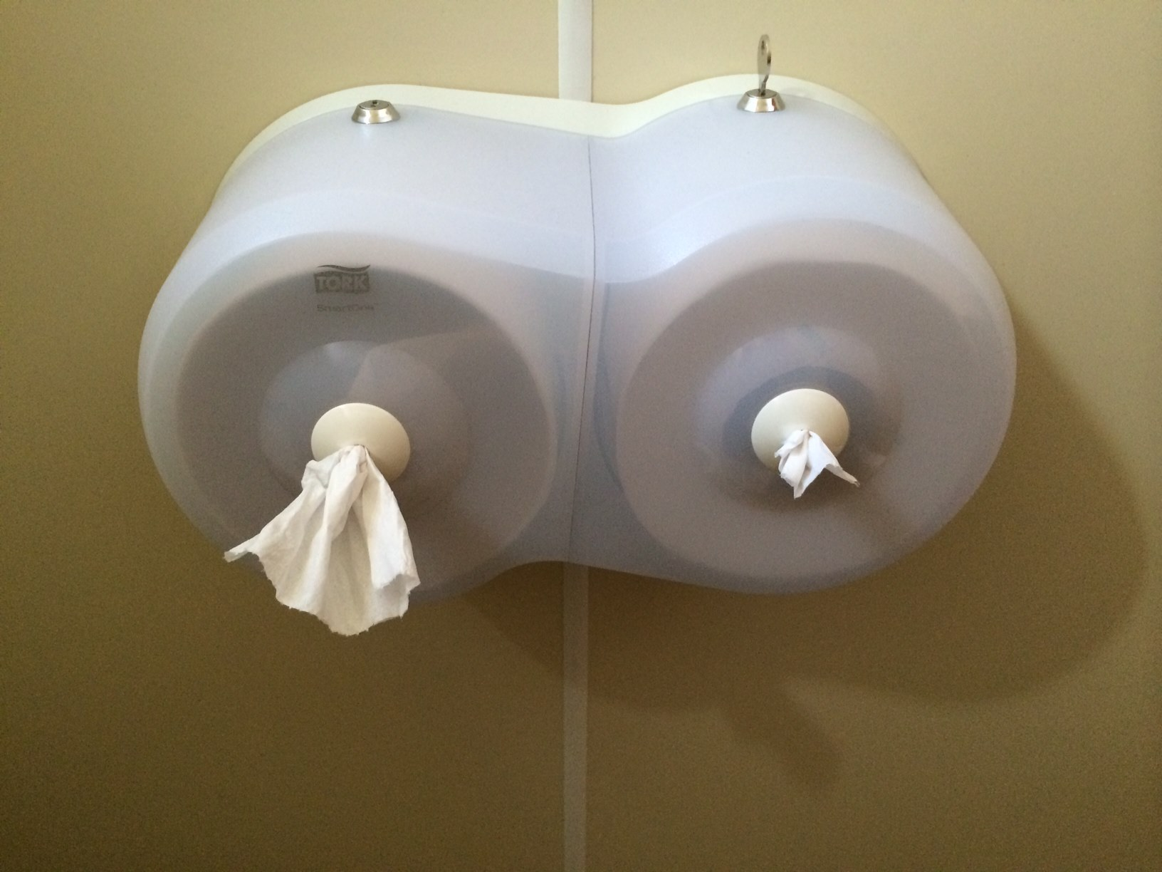 Very boob-like toilet paper dispenser